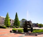 Water Fountain Futaba